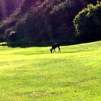 Photo taken at Aliso Creek Inn & Golf Course by Suki on 12/6/2013