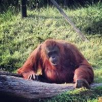 Photo taken at Monkey Trail by Devin W. on 7/6/2013