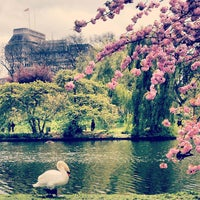 Photo taken at St James's Park by Stanny S. on 5/4/2013