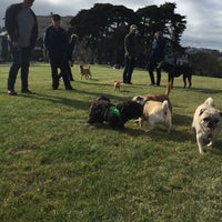 Photo taken at Alamo Square Dog Park by Lydia Y. on 5/25/2017
