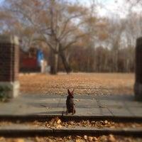 11/23/2012 tarihinde Martin S.ziyaretçi tarafından Central Park - Amphitheater'de çekilen fotoğraf