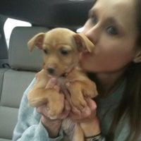 Photo taken at PetSmart by Ellen D. on 12/9/2012