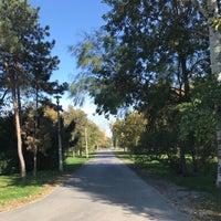 10/11/2017 tarihinde Viktória E.ziyaretçi tarafından Óhegy park'de çekilen fotoğraf