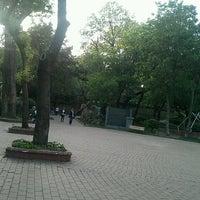 5/3/2013 tarihinde Ahmet S.ziyaretçi tarafından Maçka Sanat Parkı'de çekilen fotoğraf
