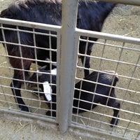 Photo taken at Central Park - Tisch Children's Zoo by Zoe F. on 10/14/2012