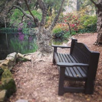 Photo taken at Descanso Gardens by Mackie T. on 3/20/2013