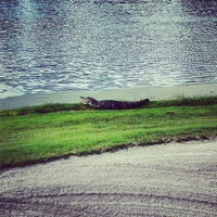Photo taken at Disney's Osprey Ridge Golf Course by DrLagos on 4/19/2013