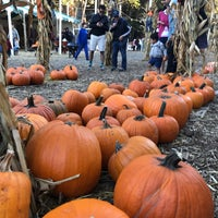 Photo taken at Clancy's Pumpkin Patch by Toby C. on 10/23/2017