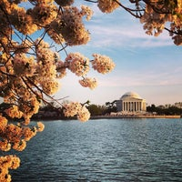 Photo taken at Tidal Basin by Jason T. on 4/10/2013