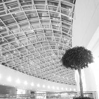 Foto scattata a Shopping Palladium da Thiago G. il 4/12/2013
