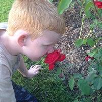 Photo taken at Julia Davis Rose Garden by Lori B. on 6/21/2014
