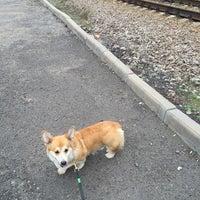 Photo taken at УФС по ветеринарному и фитосанитарному надзору by 🐰 on 9/5/2015