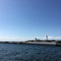 6/3/2017にHino S.が東京湾要塞 第二海堡跡で撮った写真