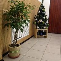 Снимок сделан в Японский пёс пользователем Анастасия Б. 12/13/2013