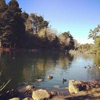 Foto tomada en Golden Gate Park por Nathan M. el 12/19/2012