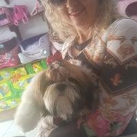 Photo taken at Pet Shop York News by Elma B. on 12/3/2016