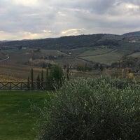 Photo taken at Fattoria Abbazia Monte Oliveto by Dominique on 11/22/2017