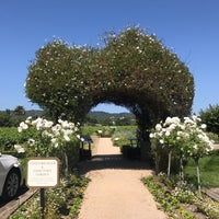 Photo taken at Dry Creek Vineyard by Mayly on 5/27/2017