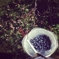 Photo taken at Berry Sweet Orchards, LLC by Jessica W. on 6/14/2014