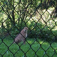 Photo taken at Greater Vancouver Zoo by Tyler F. on 7/6/2013