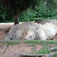 10/7/2013에 Sarjis💫님이 Xiang Jiang Safari Park, Guangzhou에서 찍은 사진