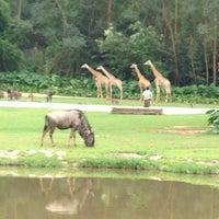 Photo prise au Xiang Jiang Safari Park, Guangzhou par Sarjis💫 le10/7/2013
