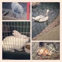 Photo taken at ZooQuarium by Shellye E. on 11/13/2012