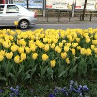 3/30/2013 tarihinde 💛💙Canan K.ziyaretçi tarafından Çekirge Meydanı'de çekilen fotoğraf