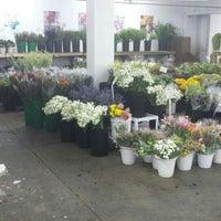 Photo taken at Berkeley Florist Supply by Brett V. on 6/23/2016