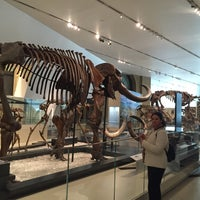 Photo taken at Royal Ontario Museum - ROM Governors by Aynur Y. on 10/30/2015