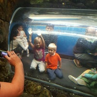 Foto tomada en Inside Penguin Crawl Tube por Alison T. el 10/22/2016