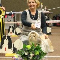 Photo taken at B's Beauty Trimsalon by Barkingbeauty S. on 12/20/2012