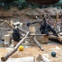 Photo taken at Pavilon goril by Anastasia K. on 10/21/2012