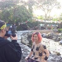 Photo taken at Ichimura Miami Japanese Garden by Janet F. on 1/31/2015