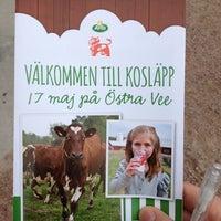 Photo taken at Kosläpp by Per H. on 5/17/2014