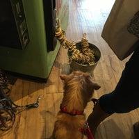 Das Foto wurde bei Polka Dog von Corey G. am 10/22/2017 aufgenommen