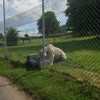 Photo taken at West Midland Safari & Leisure Park by Bart N. on 6/2/2013