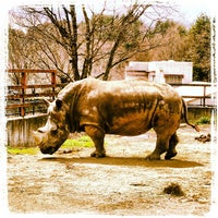 Photo taken at 盛岡市動物公園 by t w. on 4/28/2013