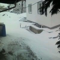 Das Foto wurde bei serano-media von Günther S. am 12/11/2012 aufgenommen