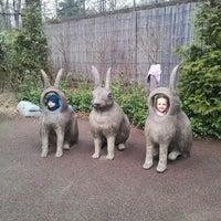 Photo taken at Central Park - Tisch Children's Zoo by Olexy S. on 3/25/2013