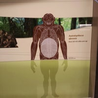 Photo taken at David H. Koch Hall of Human Origins by Olexy S. on 9/2/2013