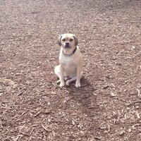 Photo taken at Happy Valley Dog Park by Kelli Jo C. on 3/13/2014