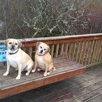 Photo taken at Happy Valley Dog Park by Kelli Jo C. on 2/21/2014
