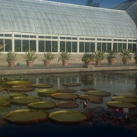 Photo taken at Monet's Garden at The New York Botanical Garden by Cate P. on 10/16/2012