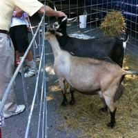 Photo taken at Brainerd Farmer's Market by Emily F. on 6/15/2013