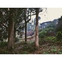 Photo taken at Glen Park Canyon by Diana K B. on 1/30/2014