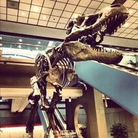 Photo taken at Pittsburgh International Airport (PIT) by Josh J. on 11/28/2012