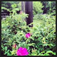 Photo taken at Cedar Spring Herb Farm by Cuisine e. on 6/8/2013