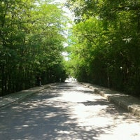 Foto scattata a İTÜ Ağaçlı Yol da Emre il 9/27/2012