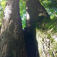 Photo taken at Wildwood Park by Melissa L. on 7/8/2017